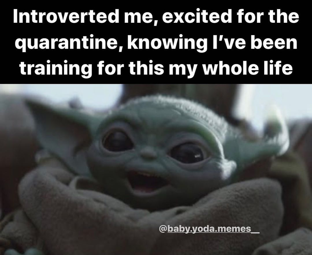Baby Yoda Memes On Instagram Tag Someone Who Has Been Training Their Whole Life For This Follow Ba Yoda Funny Funny Laugh Funny Relatable Memes