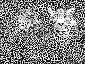Luipaard print