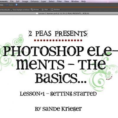 Photoshop Elements The Basics