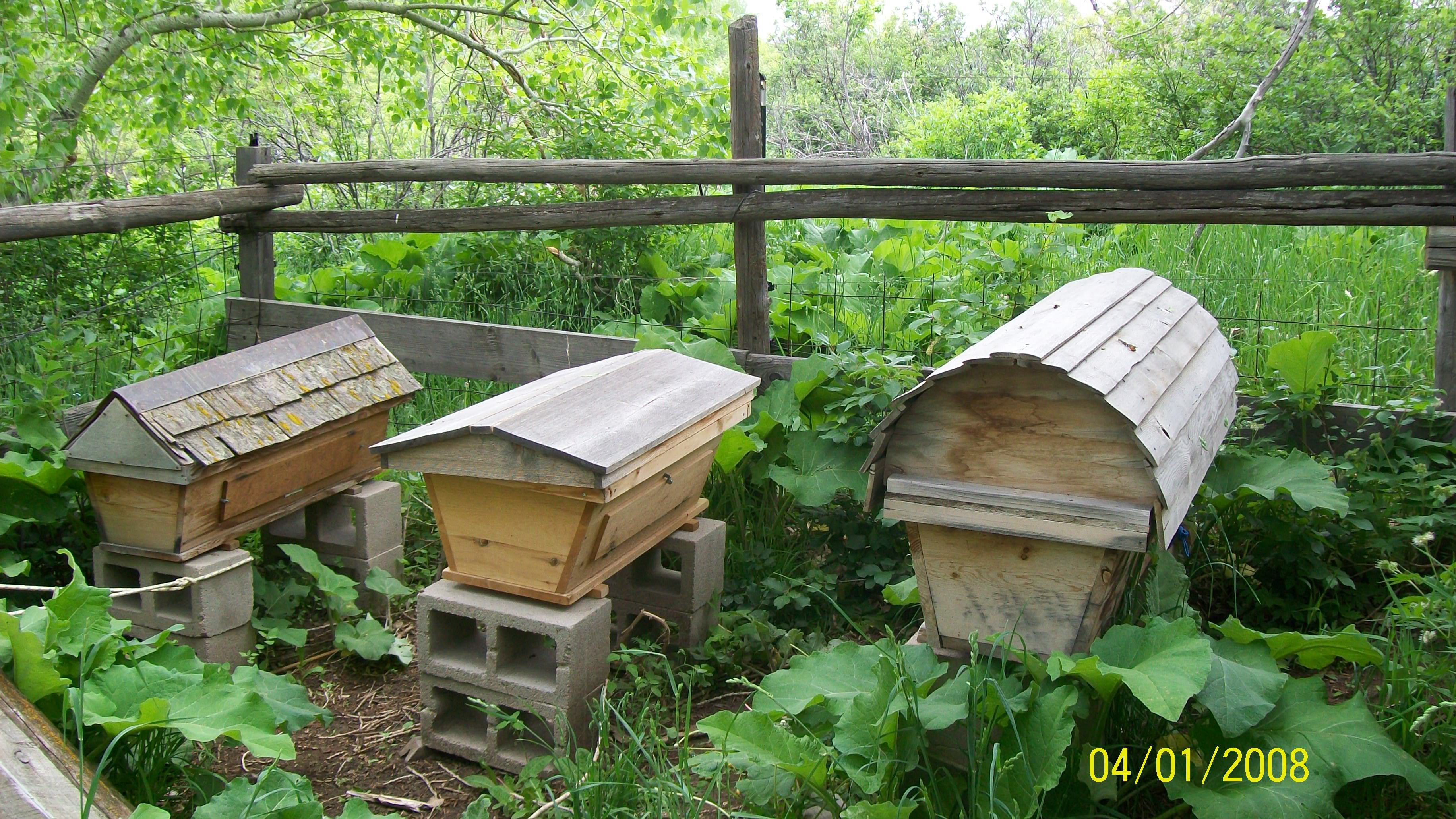 How To Build Top Bar Beehives Ehow. Top Bar Hive Plans ...