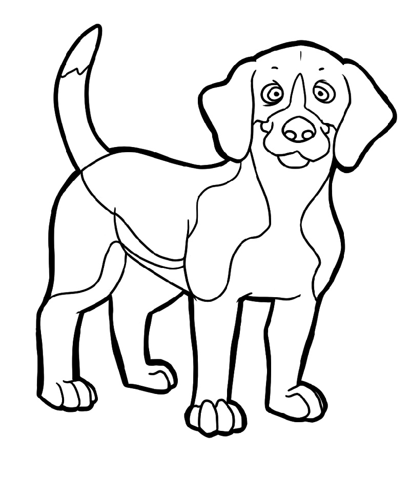 Beagle Coloring Pages Free Full Documents | Beagle colors ...