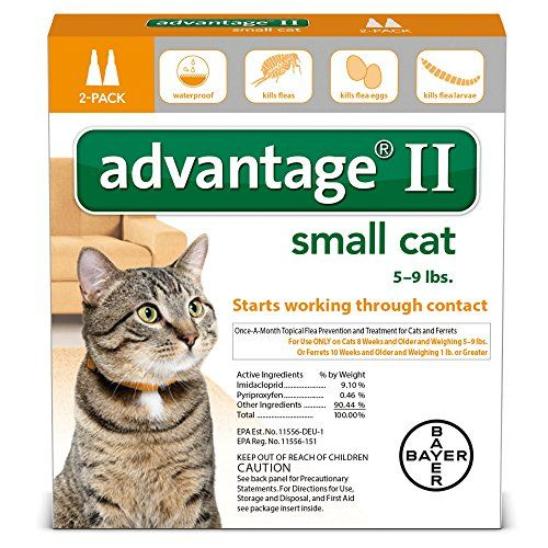 Bayer Healthcare Advantage Ii Small Cat 2 Pack Details Can Be Found By Clicking On The Imag Flea Control For Cats Advantage Flea