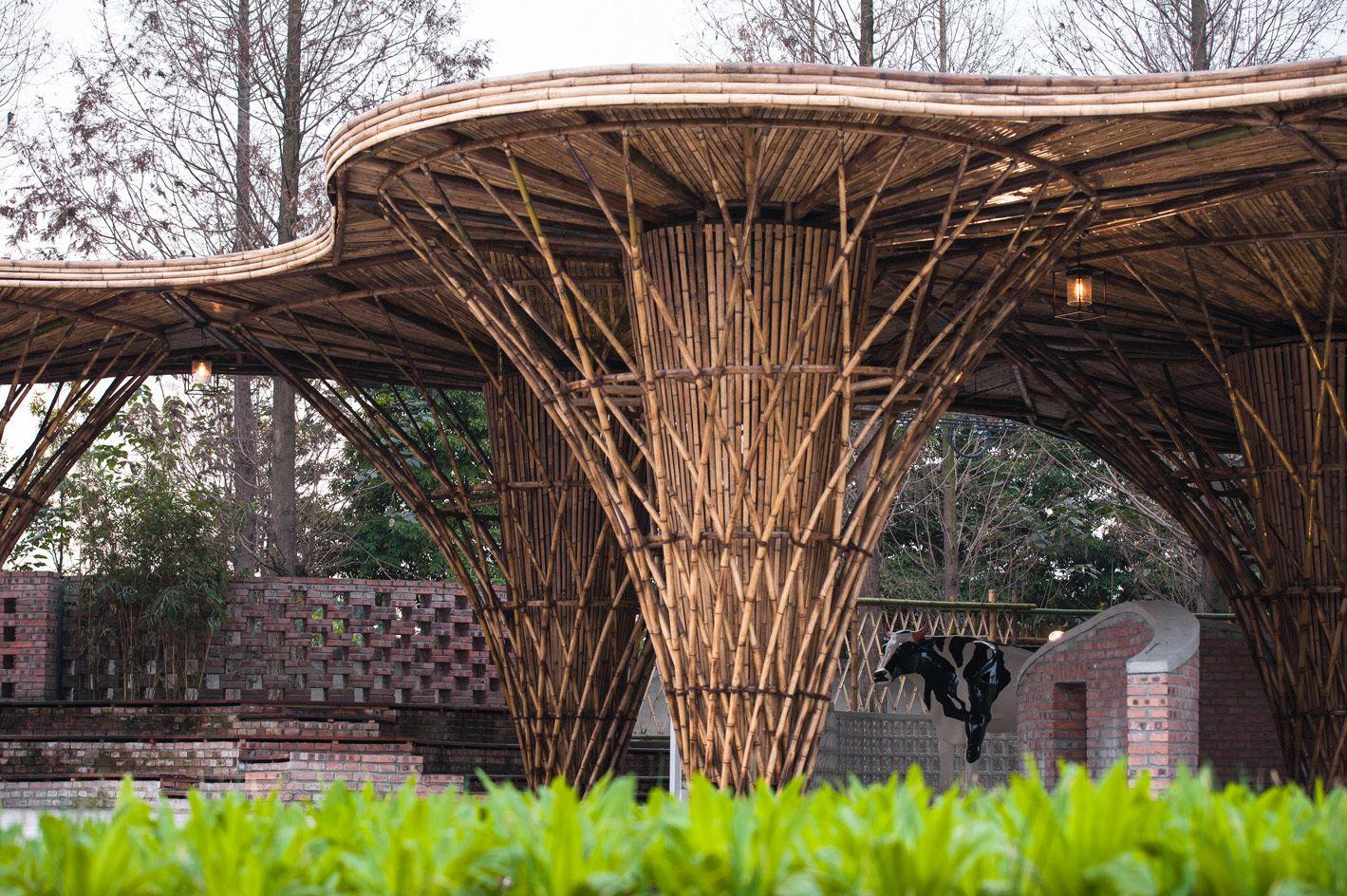 Galer a de el jard n de bamb atelier rep 12 for Jardin bambu
