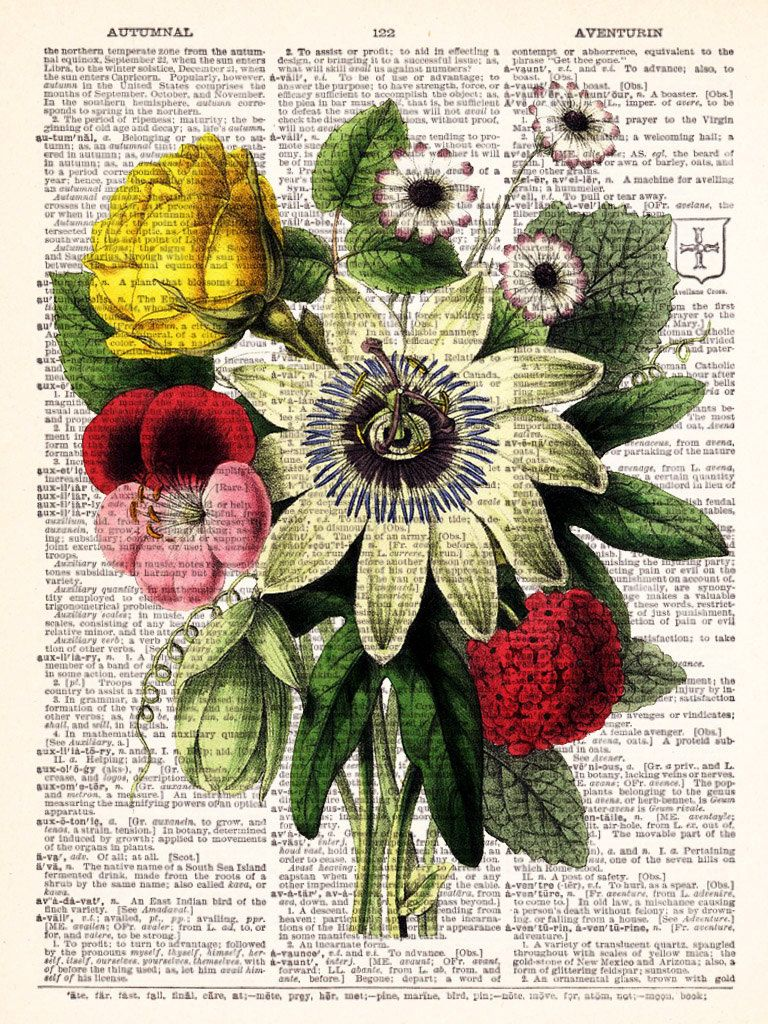Vintage Flowers 2 Vintage Dictionary Print by TheRekindledPage