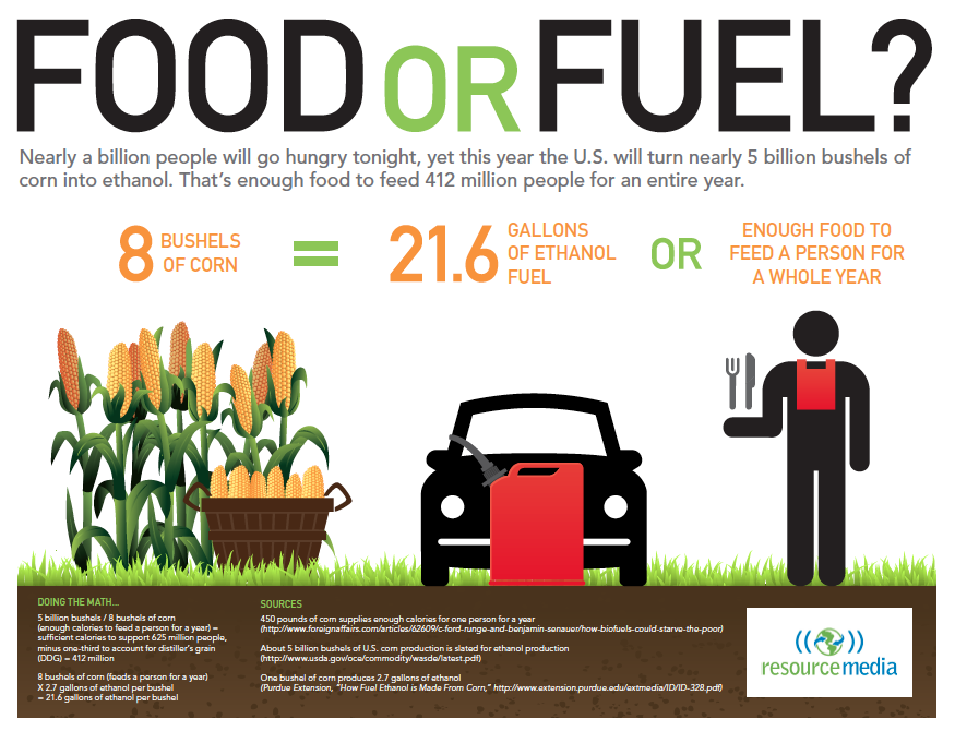 The Corn Identity: The US Will Make Ethanol Out Of Enough Corn To ...
