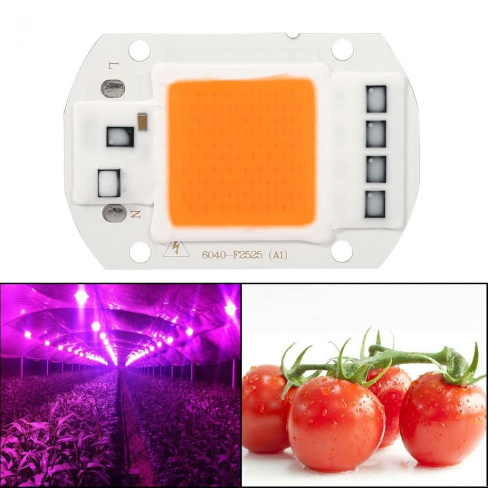 Cob Led Verlichting Led Lamp 50w Panel Led Verlichting Grow Lamp Light Full Spectrum
