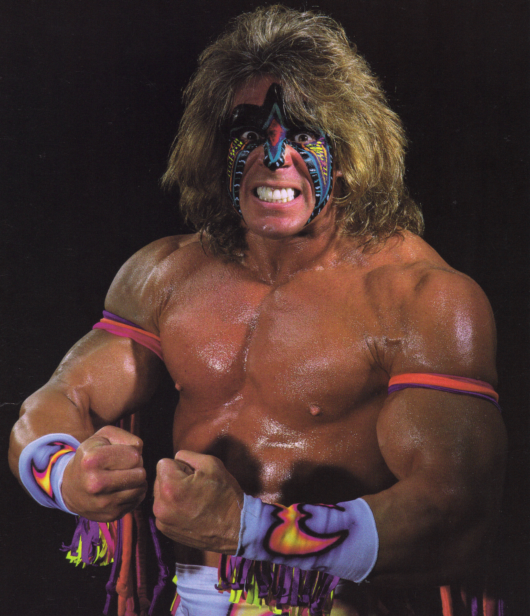 The Ultimate Warrior Character Giant Bomb Ultimate Warrior Warrior Ultimate Warrior Quotes
