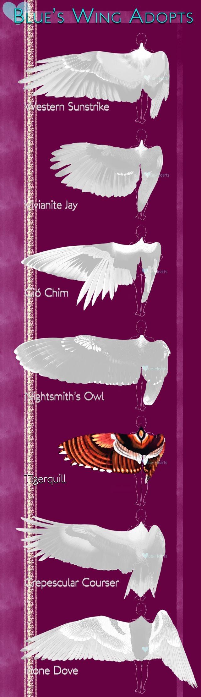 Pin By Hannah Sevestedt On Story Telling 2 Wings Art Wings Drawing Wings