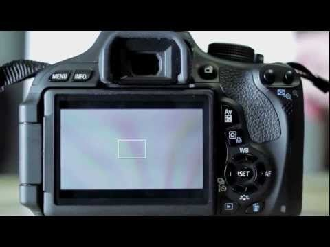 ▷ Canon T3i: Setting a Custom White Balance - YouTube
