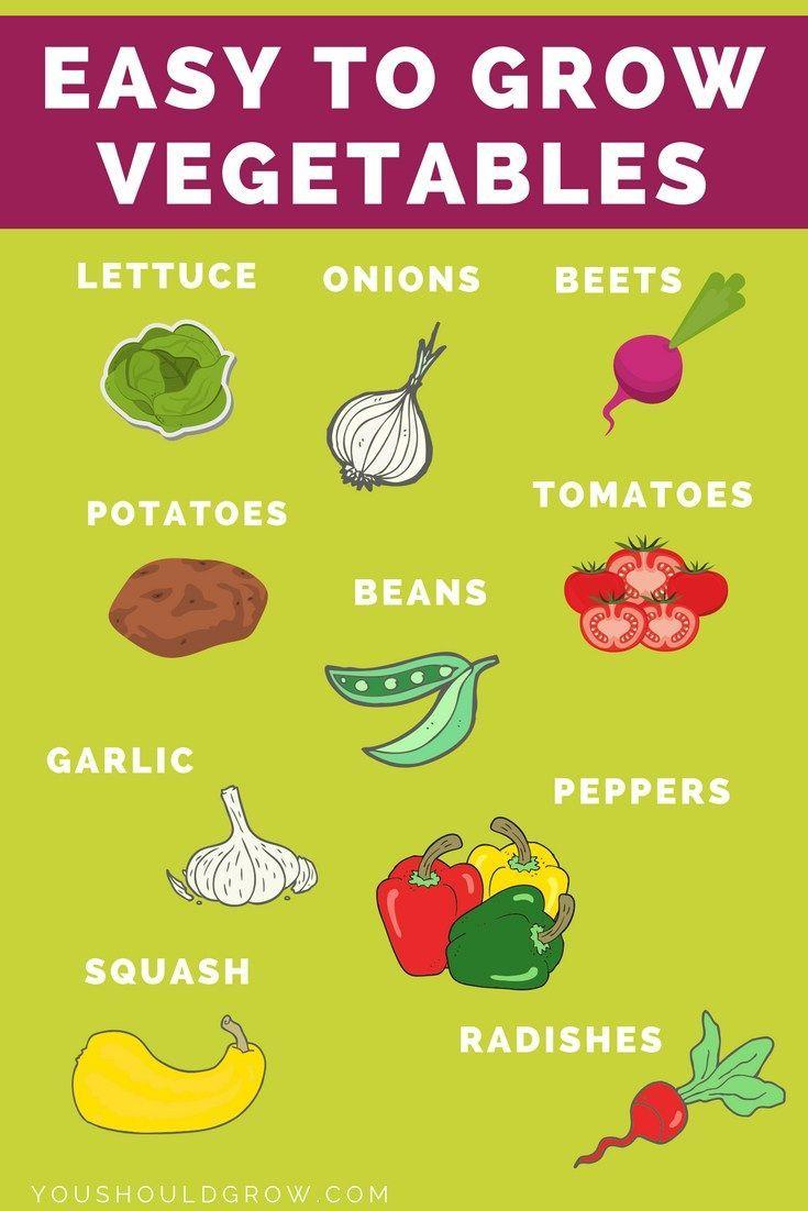 17 Key Vegetable Gardening Tips For Beginners Gardening 400 x 300