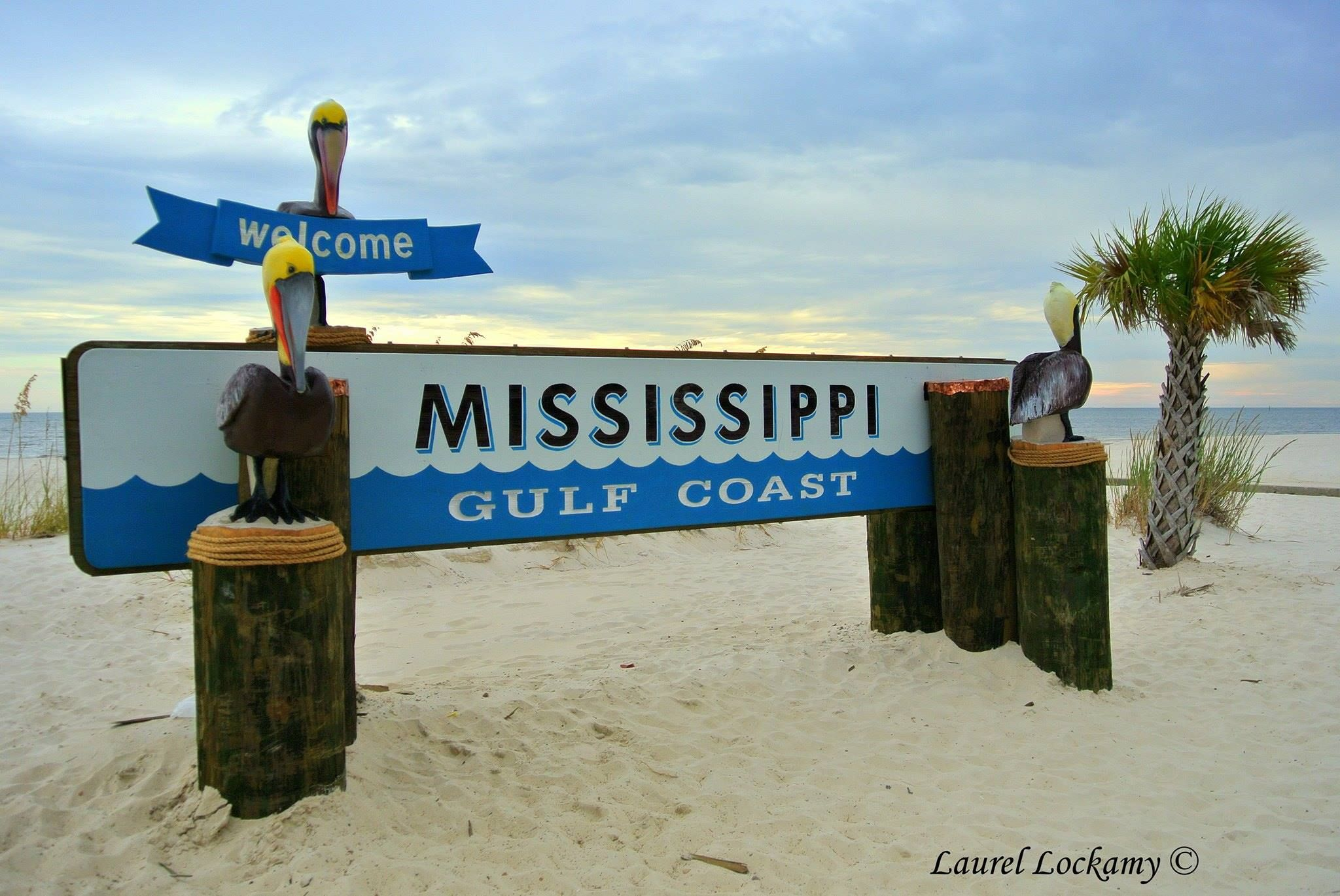 I grew up in Gulfport and still visit the Mississippi Gulf Coast as often as possible.