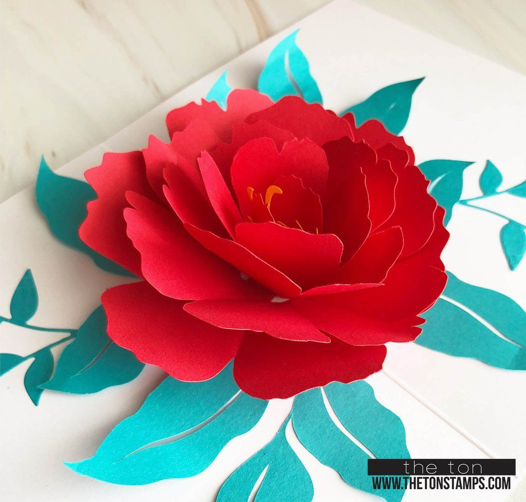Pop Up Peony Dies Floral Cards Pop Up Cards Paper Flowers