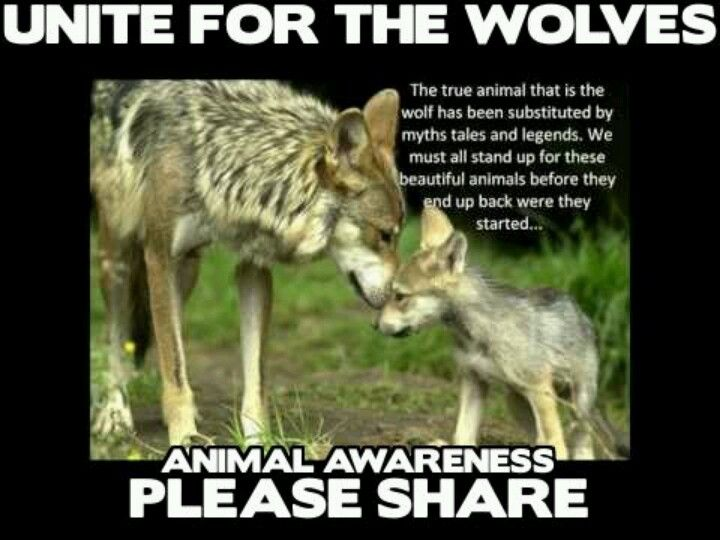 They deserve to live!!