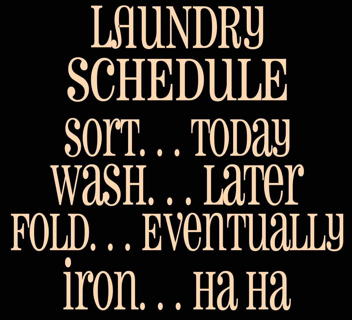 Laundry Schedule Vinyl for your DIY Project Great for a SIGN or a WALL