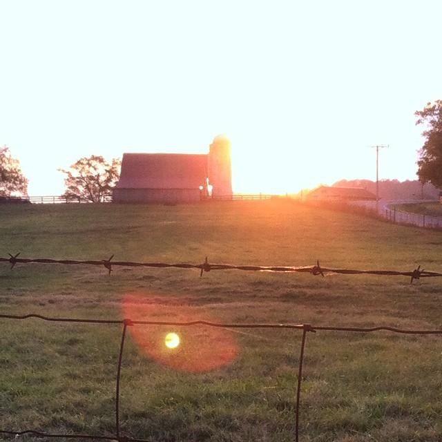 Beautiful sunset in Franklin, TN!
