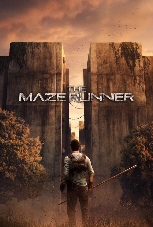 Do you know who you are in the Maze Runner? Are you brave, loyal or born to be a leader? Take this quiz to find out!