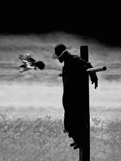 Here S What S Coming To Netflix January 2015 Jeepers Creepers