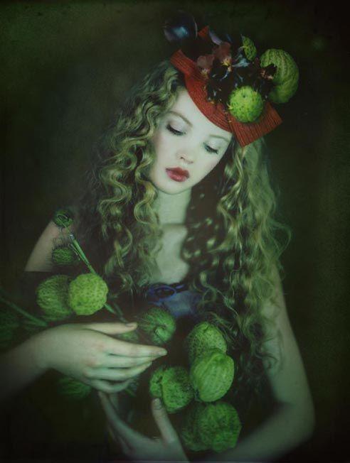 Liliroze - Bloom