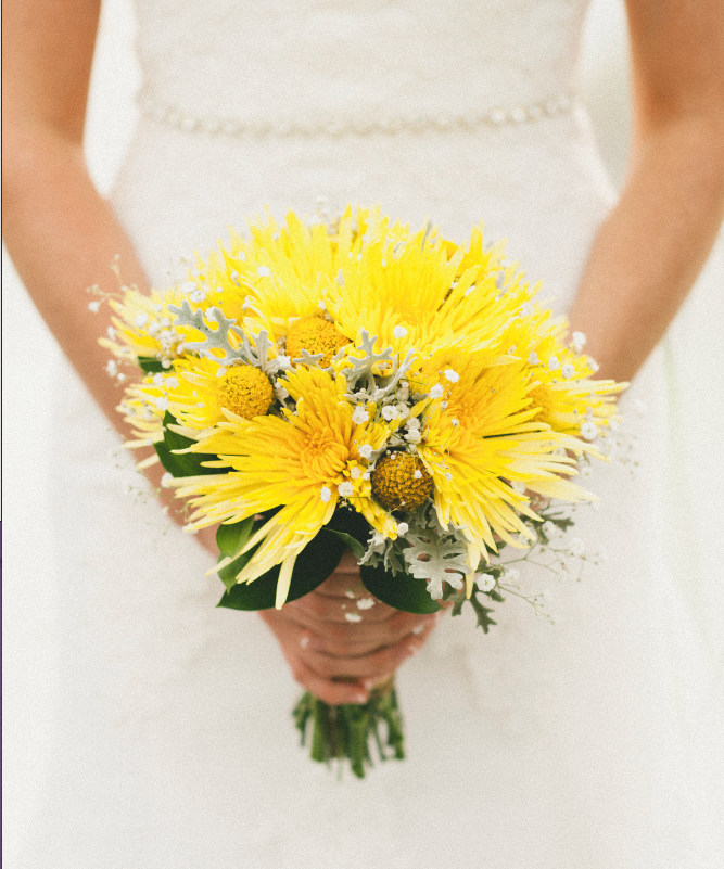 Flowers By Bethlehem Floral Studio Tauranga Nz Bouquet Of Standarad Chrysthmums Billy Buttons And Baby S Breath Billy Buttons Floral Studio Flowers
