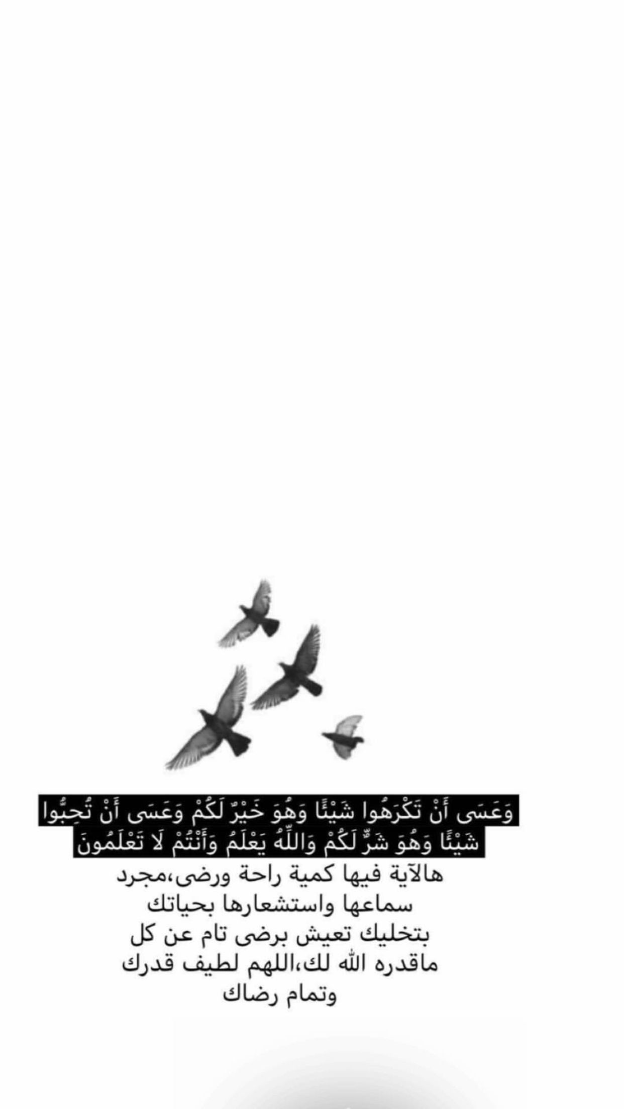 اليك حبيبي Hadith Quotes Muslim Quotes Quran Quotes