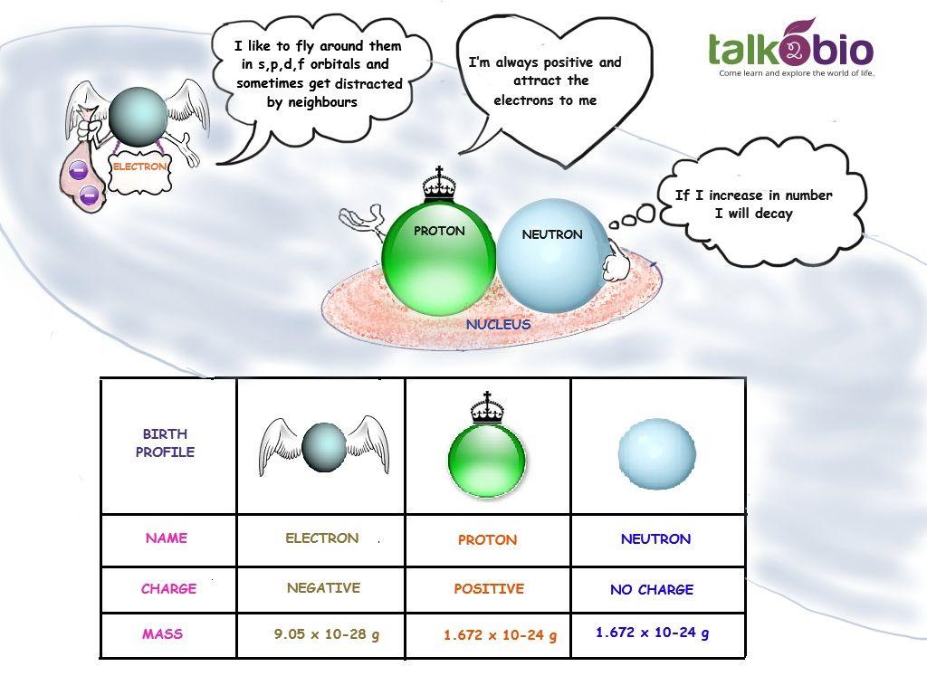 Talk2bio Subatomic Particles