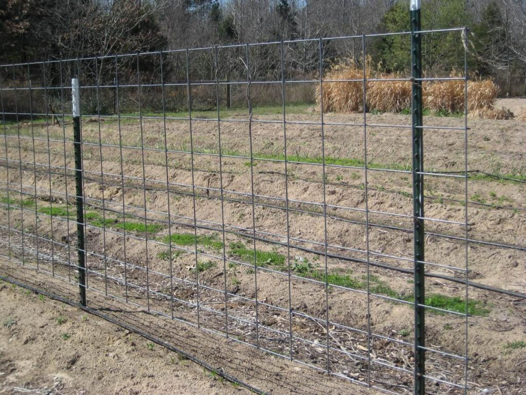 gauge hog wire panel | Gardening | Pinterest
