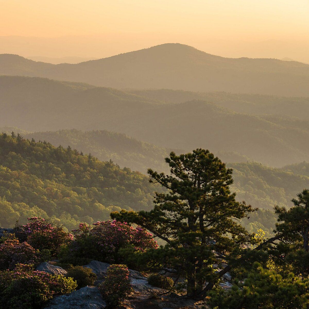 WATCH Why You Should Visit Asheville, North Carolina This