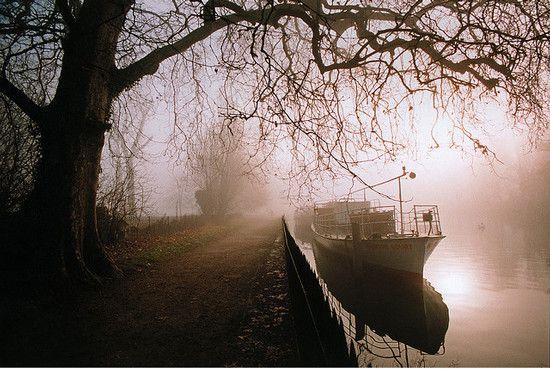 UK – Oxford – Christchurch Meadow in fog