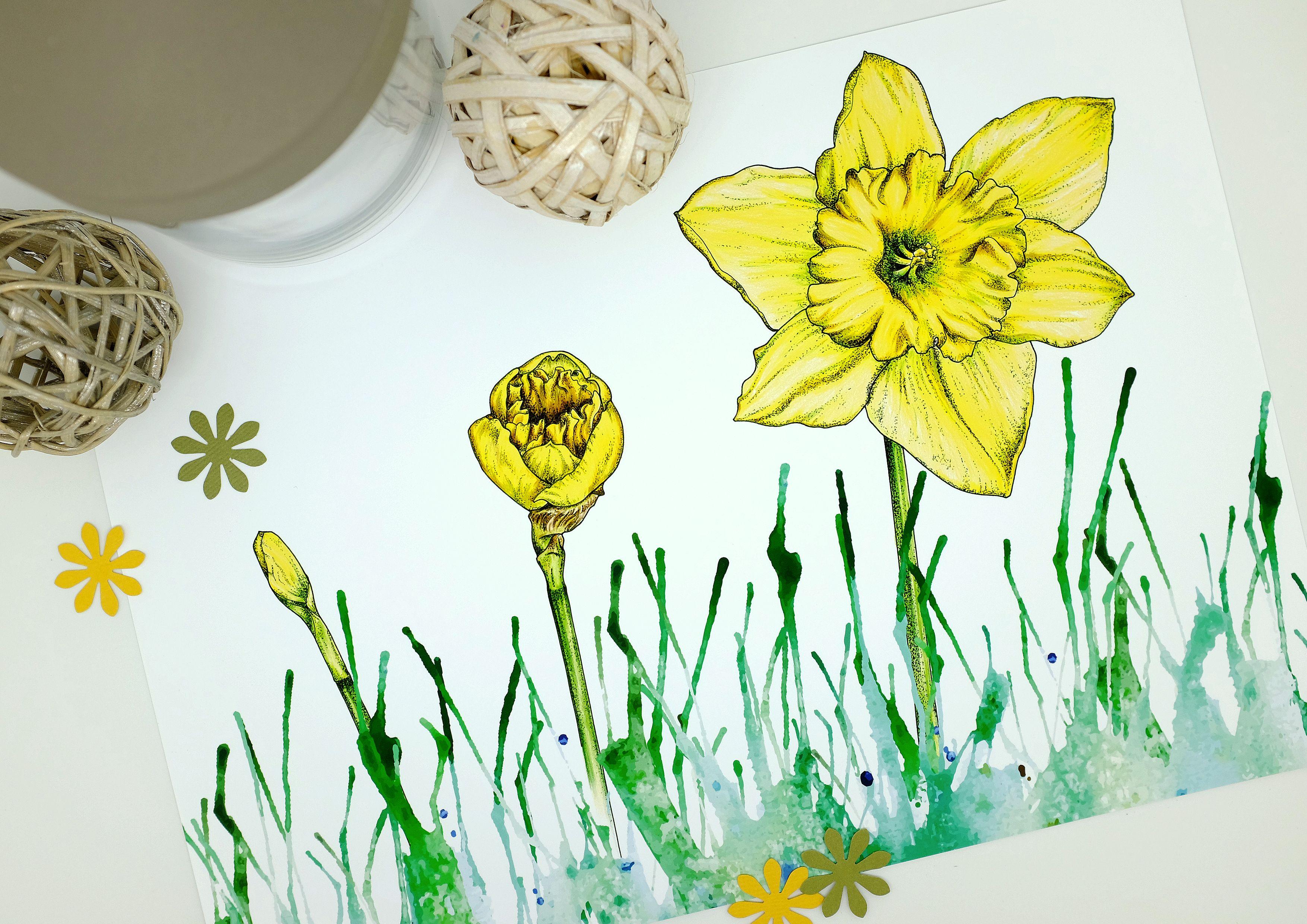 Daffodil Print Yellow Flowers Botanical Print Watercolour