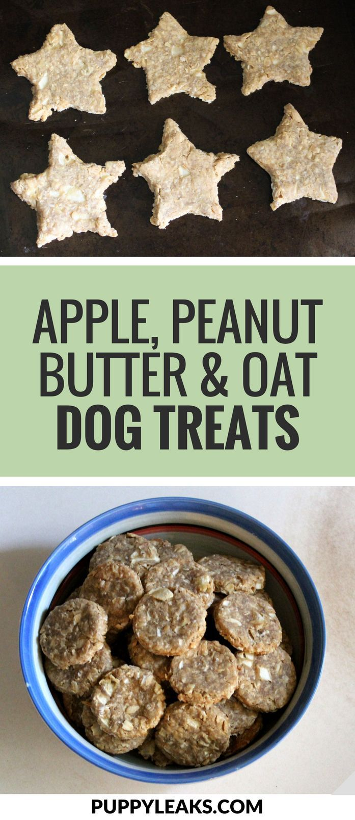 Quick Easy Apple Peanut Butter Oat Dog Treats Dog Biscuit