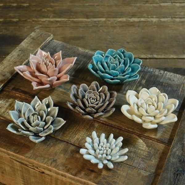 HomArt Ceramic Succulent - Set of 4