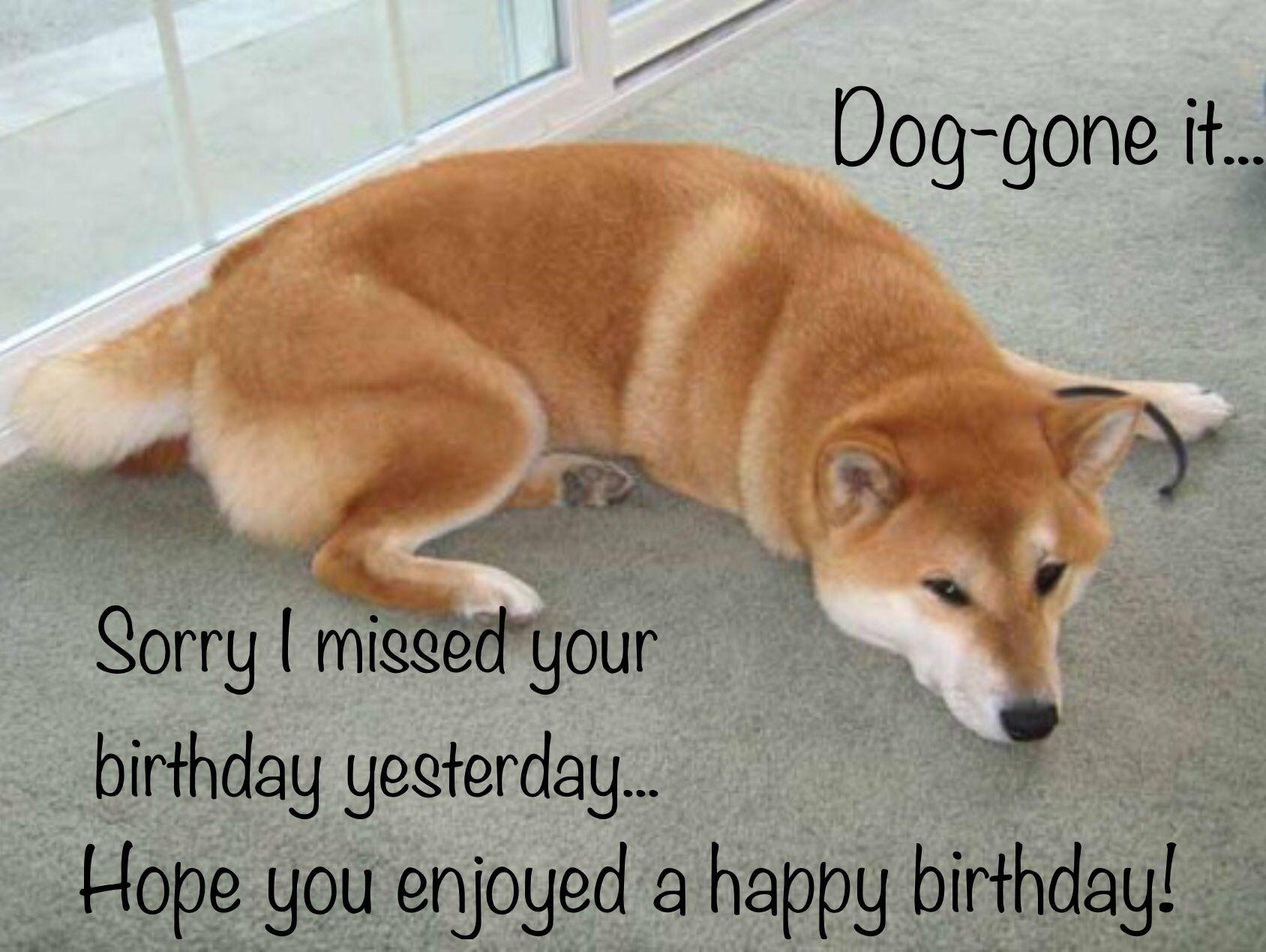 Belated Birthday Shiba Inu Best Dog Names Shiba