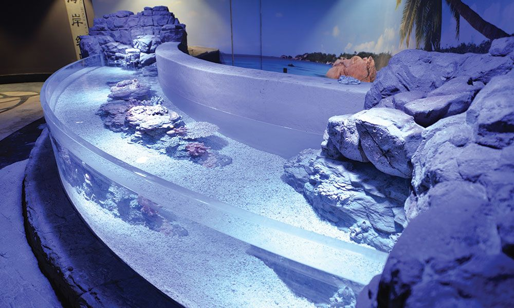 Aquarium Touch Tank featuring a thermoformed Acrylic Panel