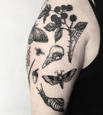 Photo of Natur Tattoo Hülle botanische Zeichnungen 24+ Ideen