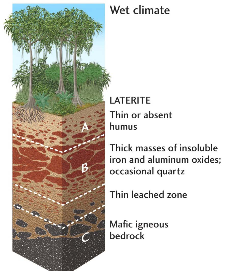 worksheet Soil Worksheet layers of soil worksheet google search geology pinterest search