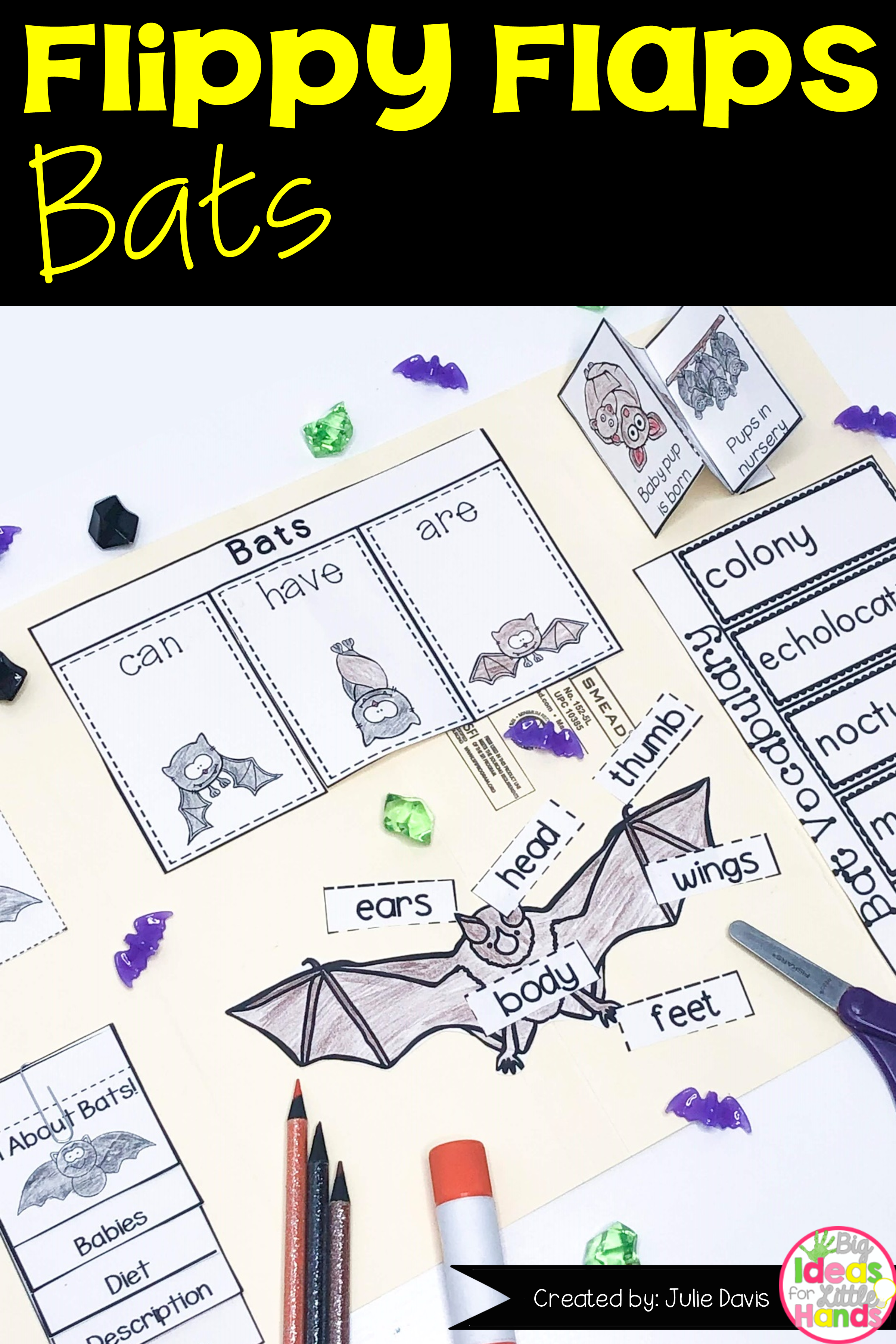 Bat Activities Interactive Notebook Lapbook With Images