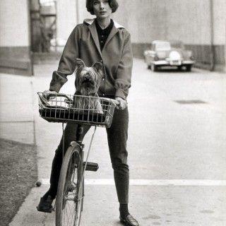 Anche Audrey e il suo cagnolino adoravano uscire in bici!