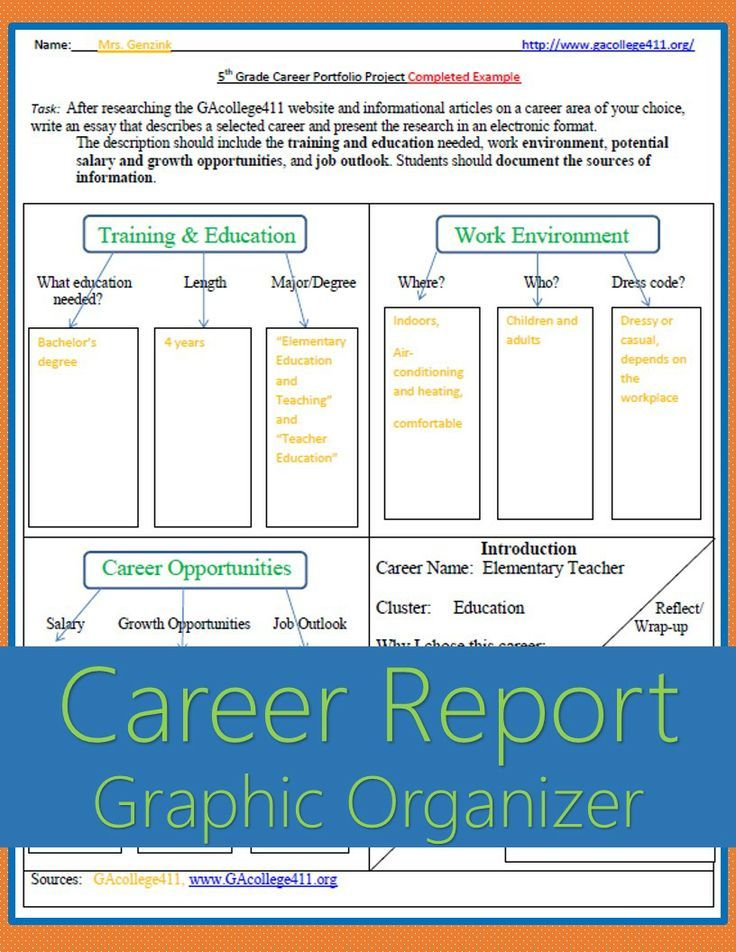 5th Grade Career Portfolio Project Graphic Organizer \ Completed - project report
