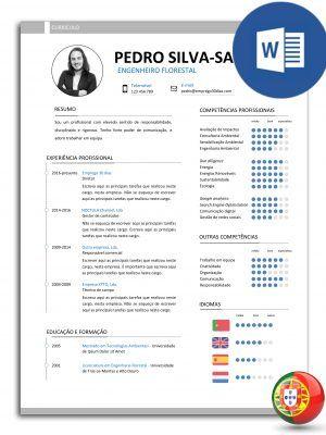 formato de resume en word