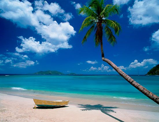 Attractive Castaway, BVI Via MuralsYourWay.com · Beach Wall MuralsWallpaper ... Gallery