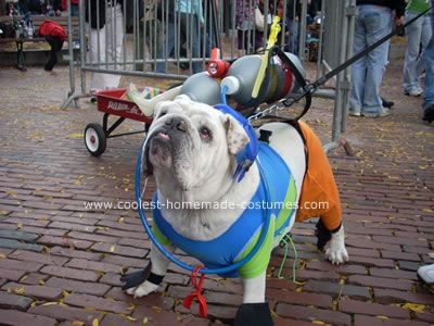 Coolest Homemade Scuba Bulldog Costume Bulldog Costume Animals