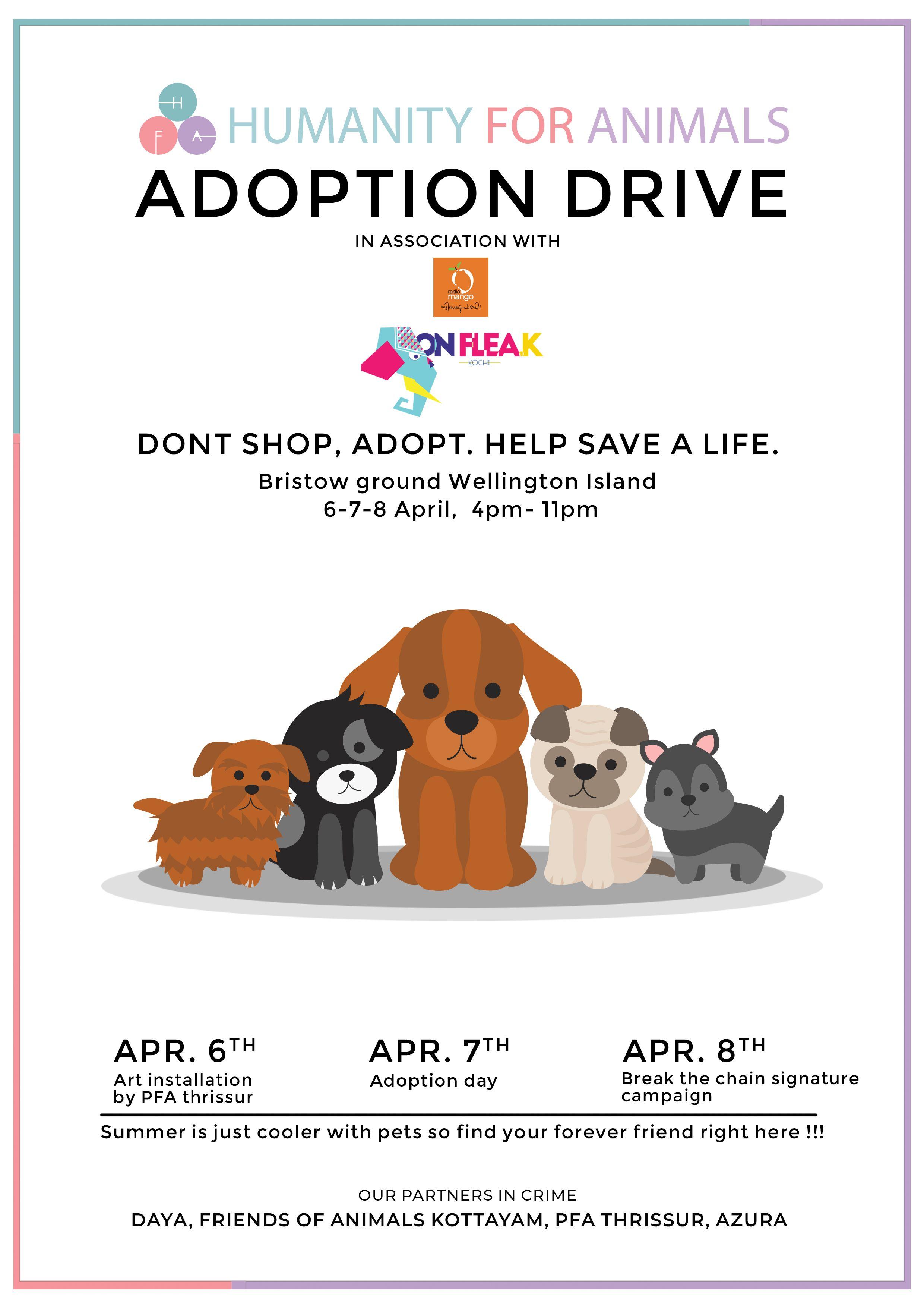 Dog Adoption Poster Kochi Kerala Kochionflea K Savealifeposter Adoption Day Cat Adoption Pet Adoption