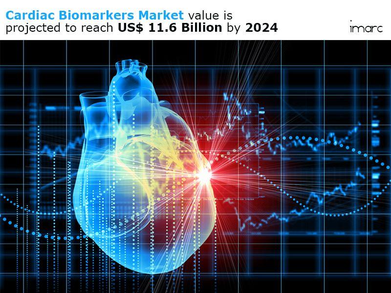 Cardiac Biomarkers Market To Worth US 11.6 Billion by