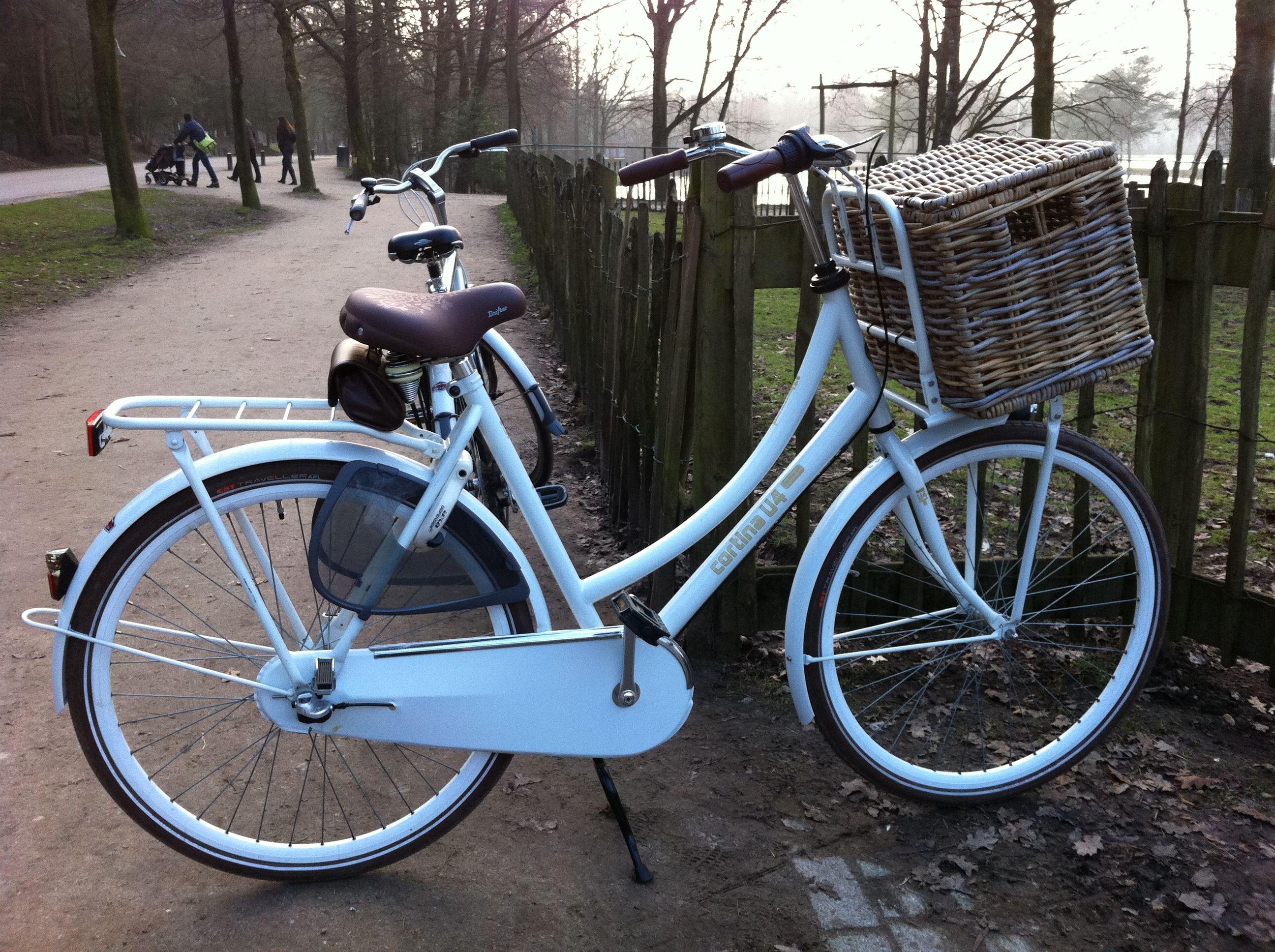Epingle Par Mallory Hill Sur Pretty Bikes