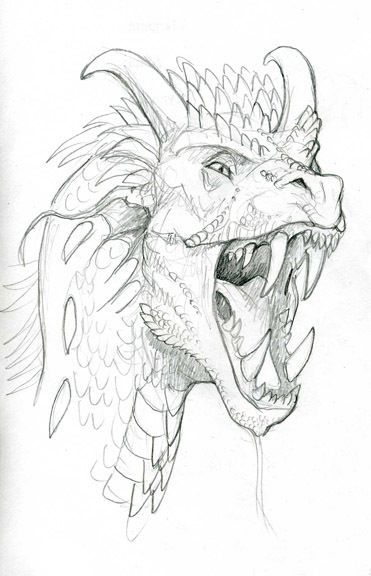 How to draw dragons dragons drawings and drawing reference how to draw dragons ccuart Images
