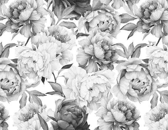 Peony Wallpaper Removable Floral