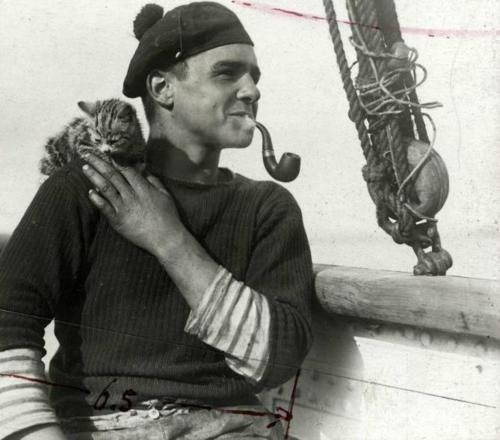Sailor and kitten, 1912 | 35 Vintage Cats At Sea