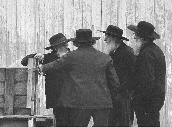 """catholic single men in lancaster county Here in lancaster county, the old order amish drive gray buggies and the old order mennonites drive black buggies"""" how does a barn raising work """"a barn-raising is indeed a community endeavor for the amish."""