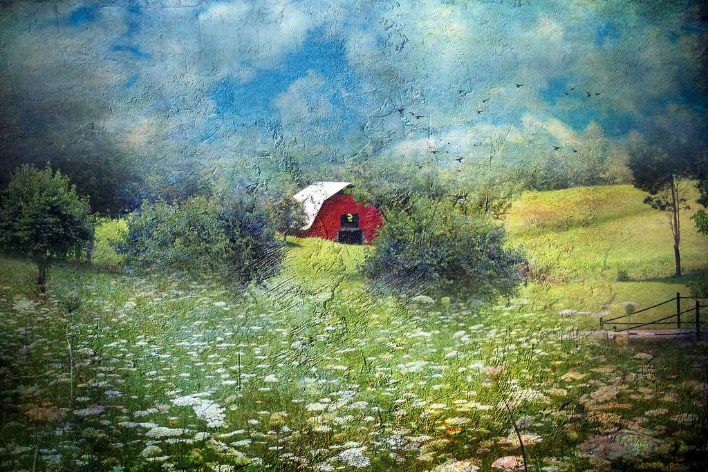 https://flic.kr/p/9VTHyN | A Fresh Coat of Paint | I drive by this barn a few times a week. It just got a fresh coat of red paint. My favorite Queen Anne's Lace field is right by it.   Texture pack: Little Patch of Blue. Texture used: Chocolate Swirl.