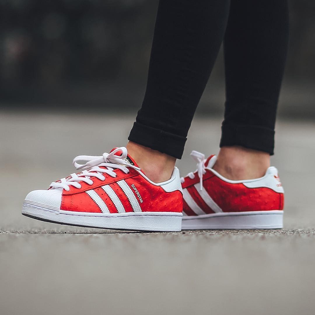 New In Adidas Superstar Animal Red Footwear White Gold Metallic